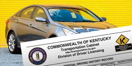 495 Three-Year Driving History Record orders were placed ...